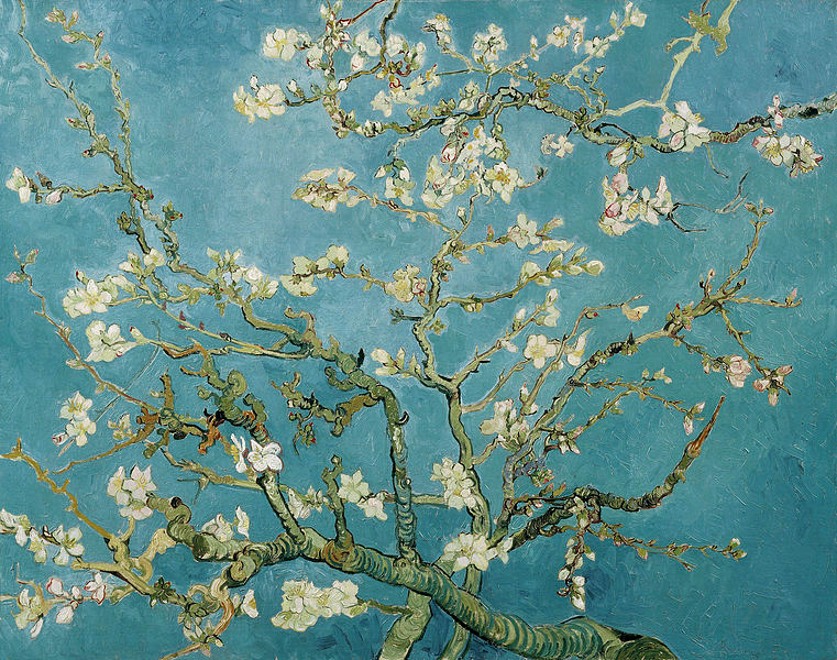 Vincent_van_Gogh_-_Branches_of_an_Almond_Tree_in_Blossom